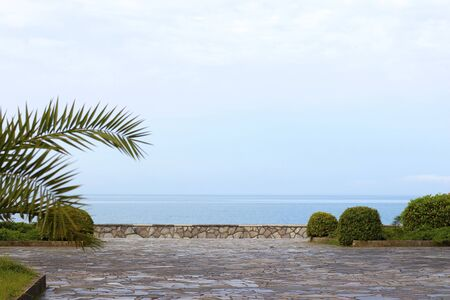 Embankment by the sea with palm trees. Natural stone pavement with blue sea and blue sky. Tourism and vacation. Cote dAzur beautiful coast. 写真素材