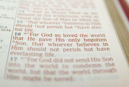 Bible verse John 3:16 photo