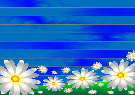 mote: Vectors white flowers on the grass on a wooden background from blue boards. Illustration