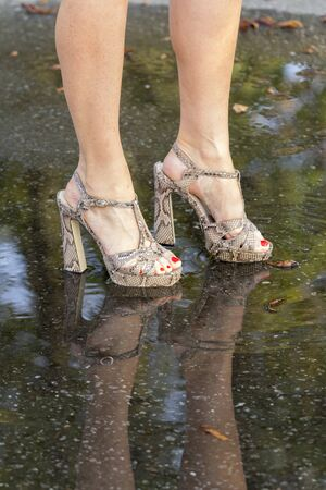 rain wet: Womens legs in fashionable shoes and their reflection in a puddle.