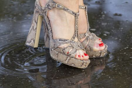 mud print: Close-up of a womans legs in fashionable shoes, standing in a puddle summer day