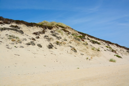 Beautiful sand dunes on the North Sea coast of Sylt, North Frisian Islands, Germany