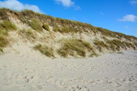 desert ecosystem: Beautiful sand dunes on the North Sea coast of Sylt, North Frisian Islands, Germany