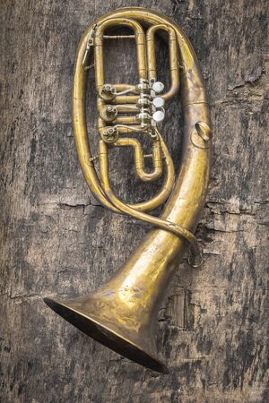 wind instrument: An old copper wind instrument hangs on a wooden board