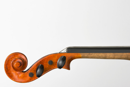 Violin fingerboard close-up shot on a white background Stock Photo