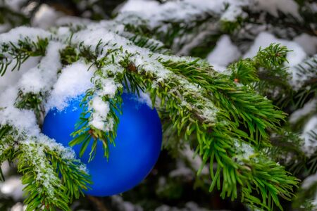 Christmas decorations. A real fir tree covered with snow. Christmas toy, blue ball, hanging on a branch. Close-up. Xmas Фото со стока