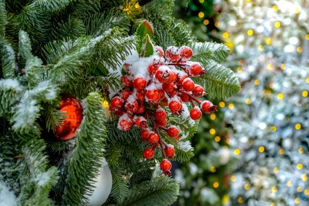 Xmas decorations. Real spruce on the street. Red berries covered with snow. Christmas toys, balls of red and silver colors, weigh on a branch. close-up. Lights unfocused in the background. Macro Фото со стока