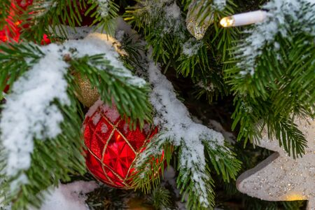 Christmas decorations. A real fir tree covered with snow. Christmas toys balls of red and gold color and a shining garland hang on a branch. Close-up. Xmas
