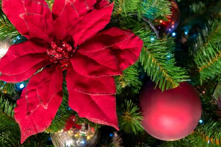 Christmas decorations. A red flower hangs on a branch. Macro. The garland is shining. Close-up.