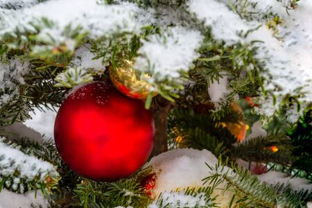 Christmas decorations. Real fir tree covered with snow. Christmas toys balls of red and gold color and a shining garland hang on a branch. Close-up. Macro. Xmas Banque d'images