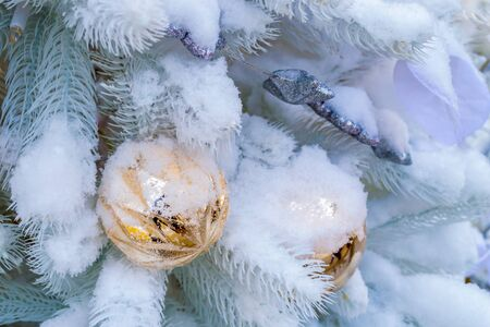 Christmas decorations. A branch of white spruce, covered with snow, toys in the form of balls hang on it. Close-up Banque d'images