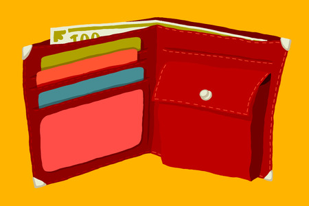 safeness: Wallet with money and credit cards.