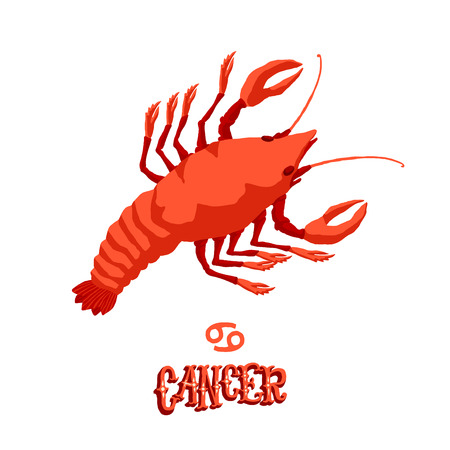 Astrological zodiac sign Cancer. Part of a set of horoscope signs. Isolated vector illustration on white background.
