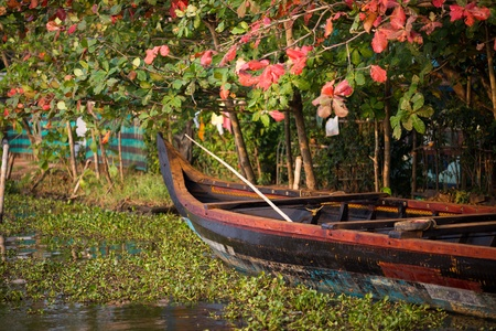 windless: Moored boat on the canal system in the Indian state of Kerala