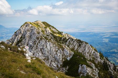 arboleda: Panorama del verano de la sierra de Montenegro