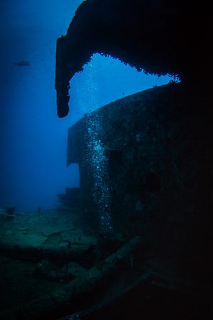 hard coral: British military transport ship sunk during World War II Stock Photo