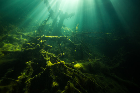 The nature of the bottom of the Ukrainian River