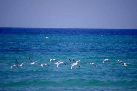 De prachtige Middellandse Zee