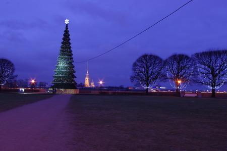 Russia, Saint Petersburg, Vasilievsky island, Christmas tree, New yea