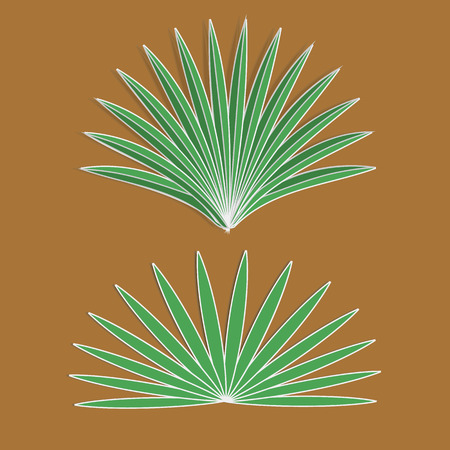 aloe vera plant: Vector  aloe sign eps 10 vector illustration Illustration
