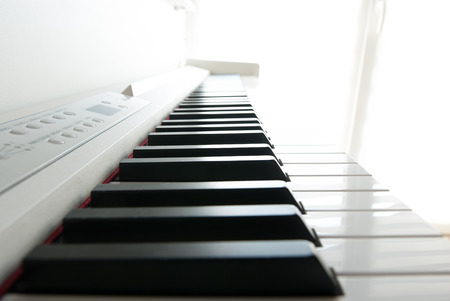 ivories: Piano keys. Piano playing. Black and white keys. Electronic piano. Musical instrument.