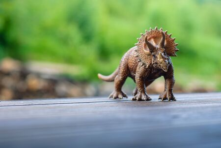 Toy dinosaur triceratops on the wooden floor
