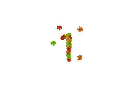 Number one made with autumn leaves isolated on white. Fall concept. Organic digits from 0 to 9. Imagens
