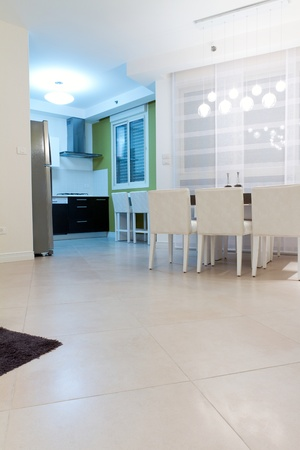 Living room with kitchen in a new house. Stock Photo - 11732460
