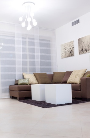 modern sofa: Living room with furnishings in a new house