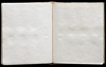 edges: Old ancient book opened with empty pages.