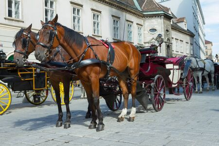 Horse-drawn Carriage in Vienna at the famous Stephansdom Cathedral Editorial