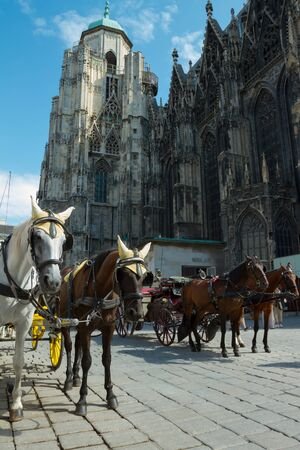 chariot: Horse-drawn Carriage in Vienna at the famous Stephansdom Cathedral Editorial