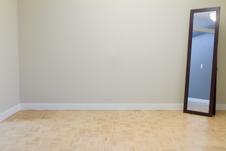 Empty Living Room with mirror in a new apartment photo