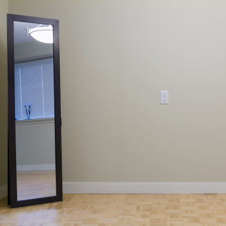 mirror on wall: Empty Living Room with mirror in a new apartment
