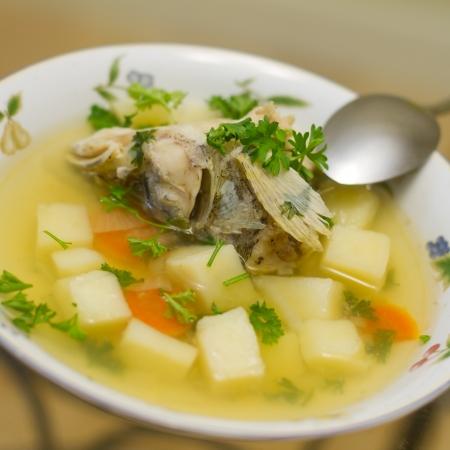 chowder: Uxa. Russian traditional fish soup.