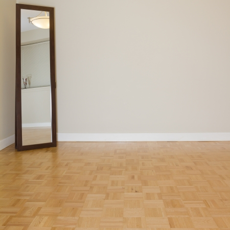 Empty Living Room with mirror in a new apartment Stock Photo - 16051813