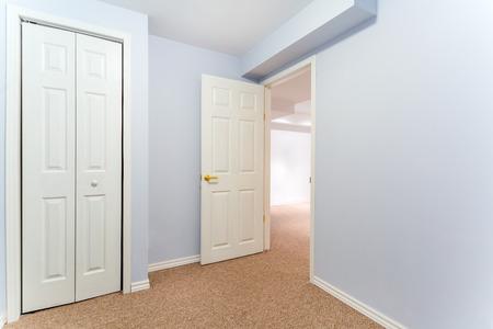 basement: Empty basement room with closet and carpet