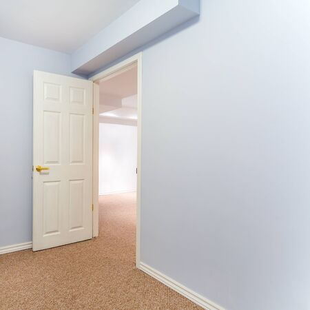 basement: Empty basement bedroom with carpet
