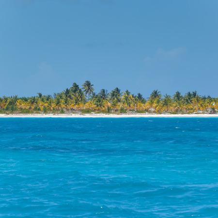 카리브 해와 외로운 섬