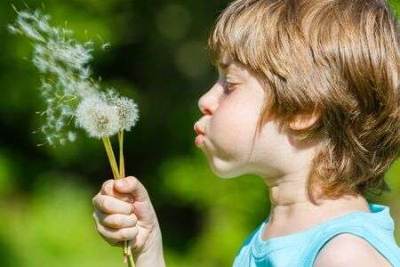 blowing dandelion: Kid blowing dandelion outdoor on green Stock Photo
