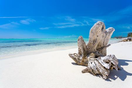 Tropical sandy beach of Cayo Largo island