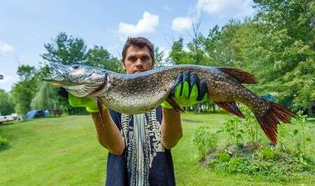caught: Fisherman caught a big pike and boasts