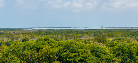 humid south: Panoramic view of the coast of the Cayo Largo tropical island close to Cuba