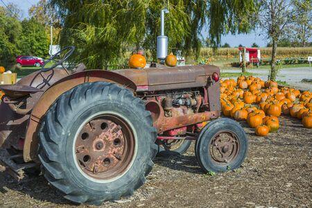 Pumpkins above truck