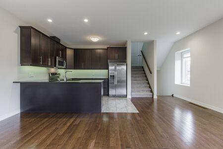 Modern Kitchen Interior Design. North America