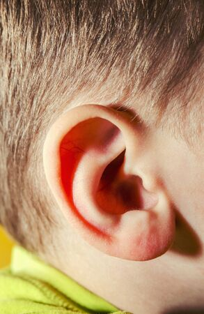 ear of a boy with brown hair.