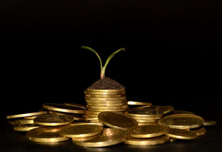 business investment growth concept. pile of coins with small trees. Black background. Space for text