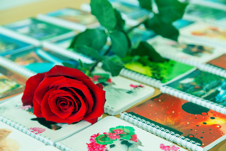 Rote Rose liegt auf Notizbüchern auf dem Tisch Standard-Bild