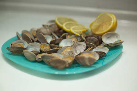 Delicious clam Spisula lies on the foil for cooking in the oven, the fire