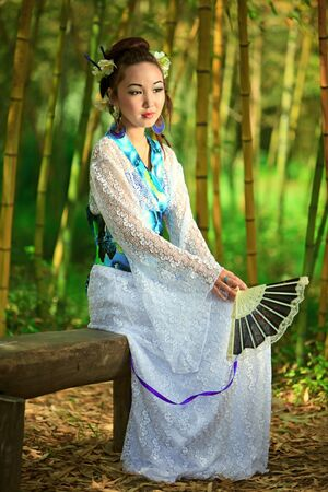 Japanese dreams Stock Photo - 13166315
